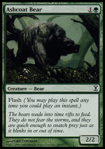 Ashcoat Bear