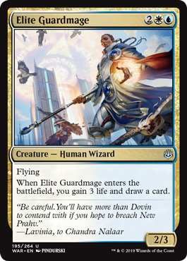 Elite Guardmage
